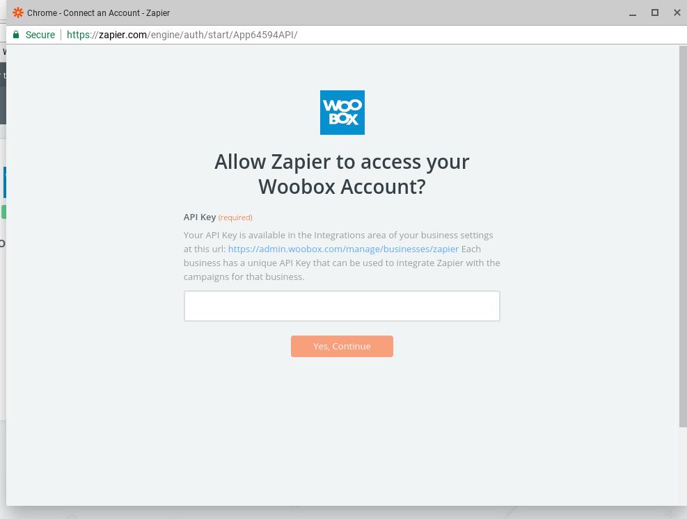 Zapier API key field