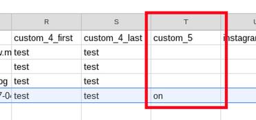 Entries export - opt in column