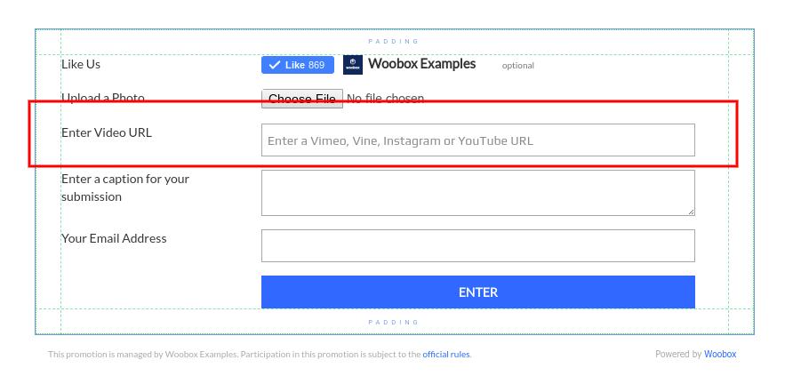 Video URL field in Form Element